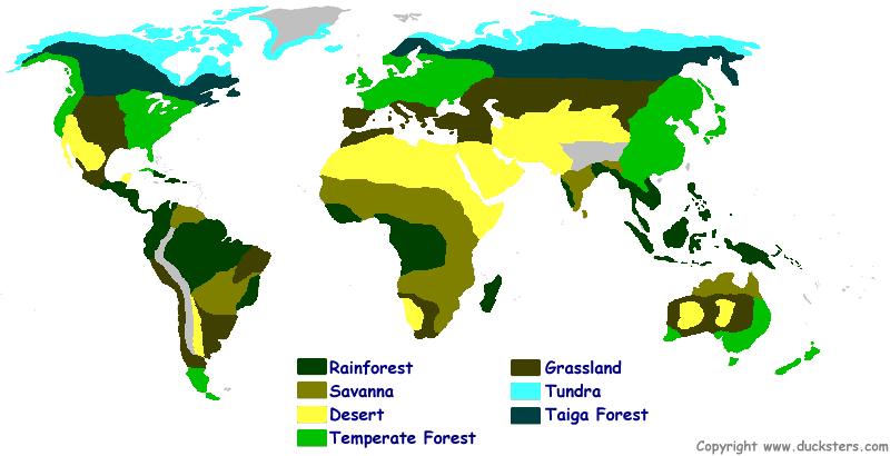 ecosystem maps of the world for kids to color