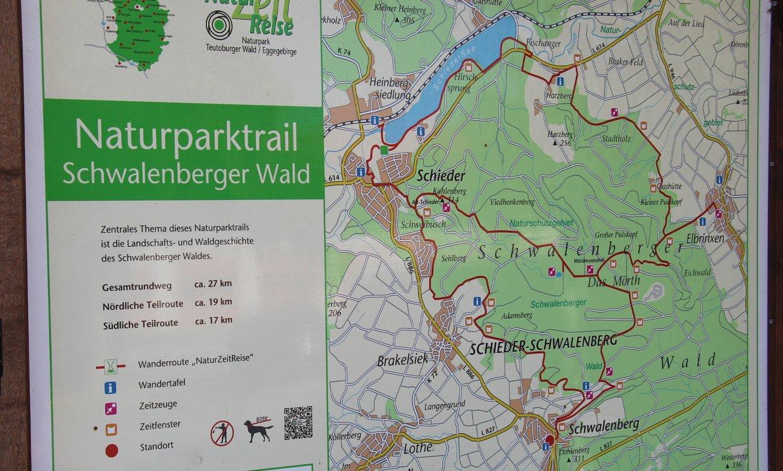 Wandern in Lippe (8): Schwalenberger Wald
