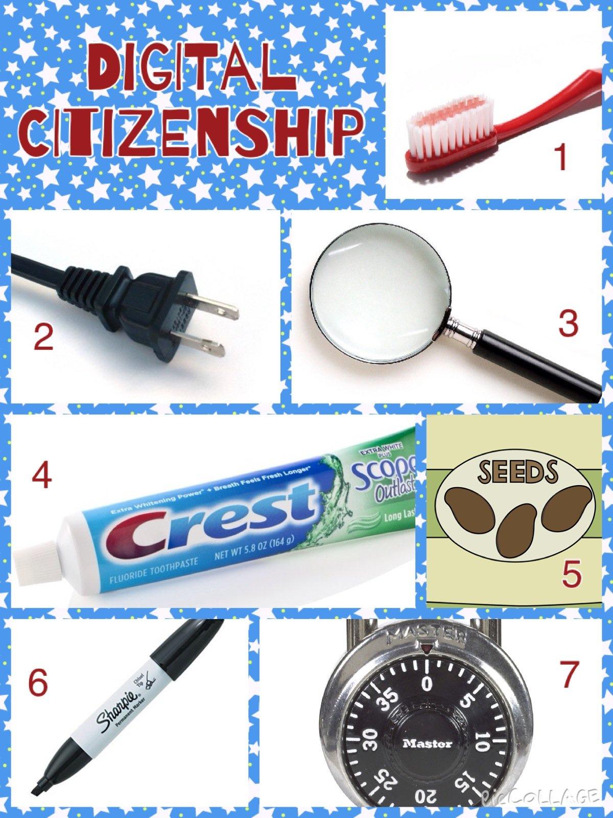 "Remix of ""Digital Citizenship Survival Kit"""