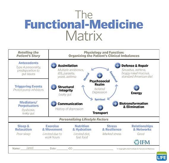 The Functional Medicine Matrix Thinglink