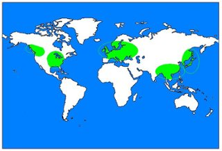 Freshwater thinglink map of freshwater biomes gumiabroncs Choice Image