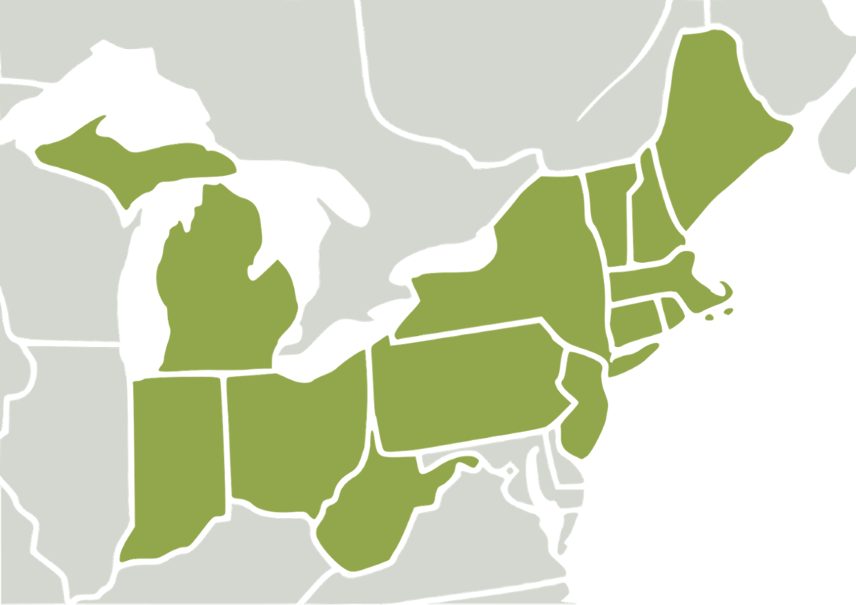 Northeast Region  ThingLink - Map of the us north east