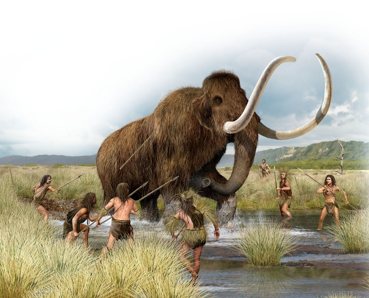 Neolithic Domestication-Annelise Oster - ThingLink