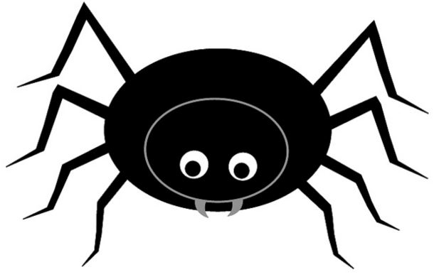 Pebble Go Kid Zone Life Cycle Of A Spider Life Cycle