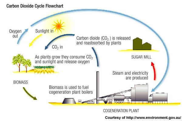 the importance of the effects of carbon monoxide There is no important source of carbon monoxide that contributes to the greenhouse effect carbon monoxide makes an insignificant contribution.