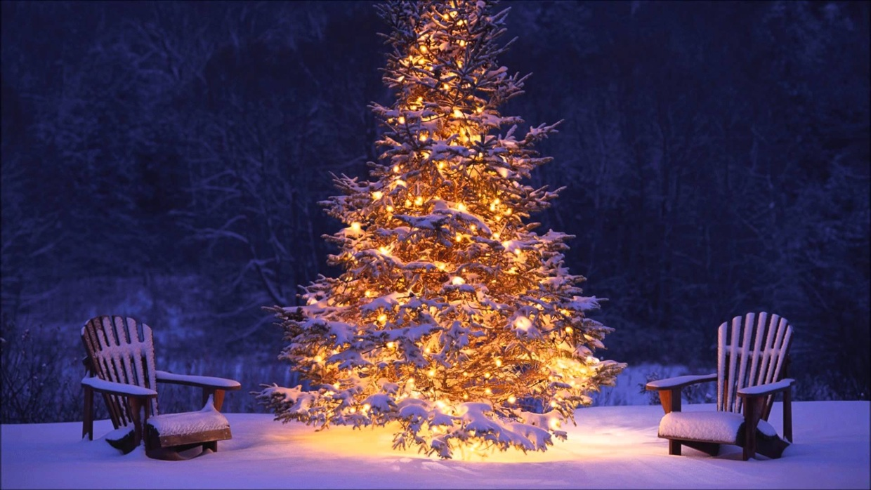 Image result for christmas in slovakia