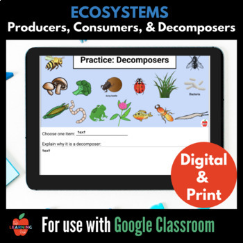 Worksheets Producers Consumers And Decomposers Worksheet producer consumer or decomposer thinglink