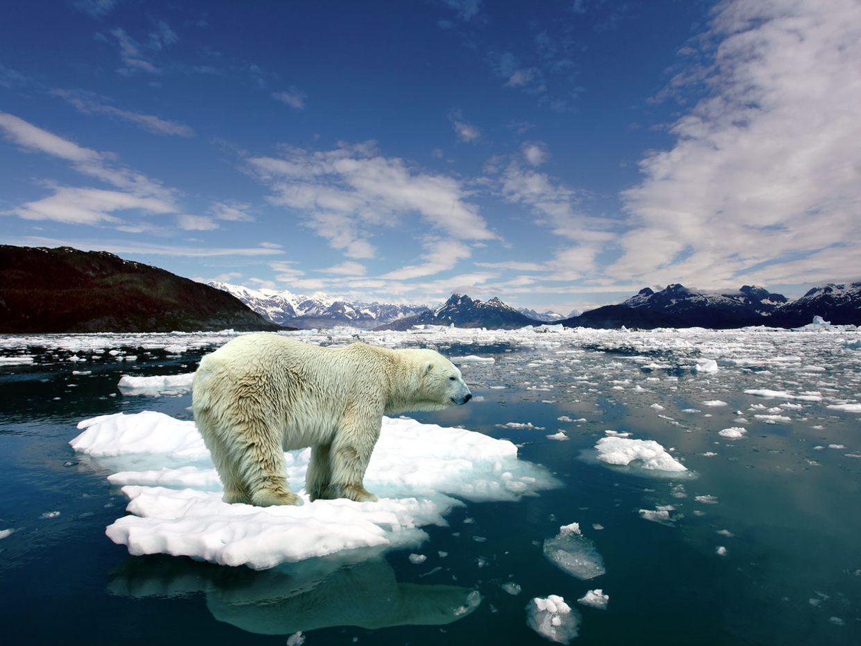 Climate Change- Melting of ice in the Arctic