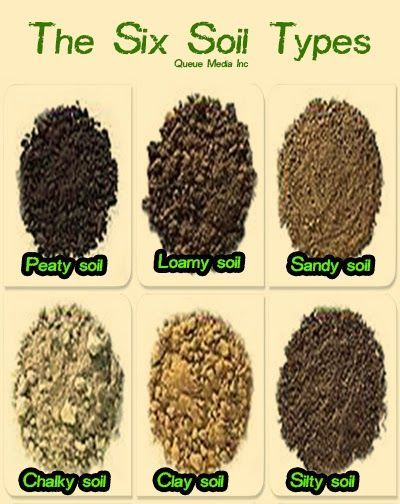 The six soils thinglink for Different types of soil and their uses