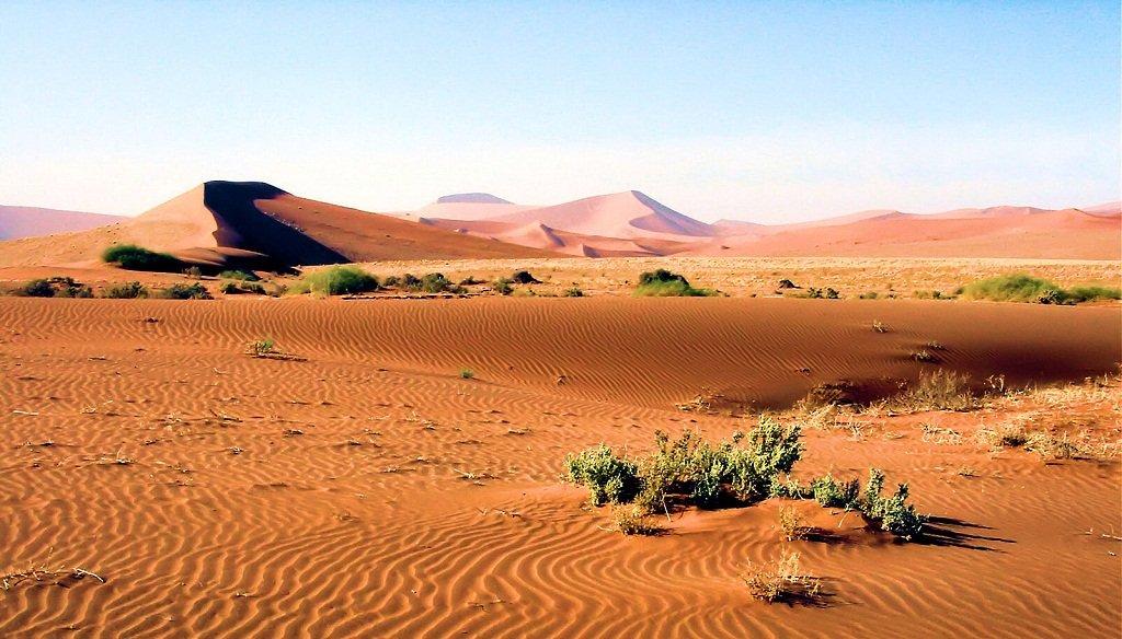 Desierto Thinglink