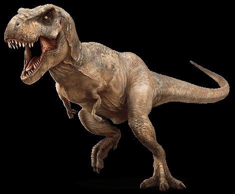 Thalia The T Rex By Lily W