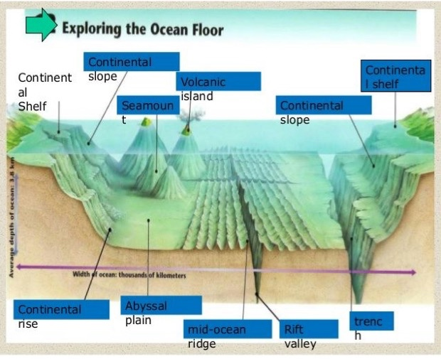 Science underwater landforms thinglink for Ocean floor zones diagram