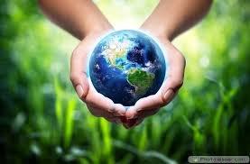 WORLD ENVIRONMENT DAYWEBQUEST - Worksheet 1, WORLD ENVIRO...