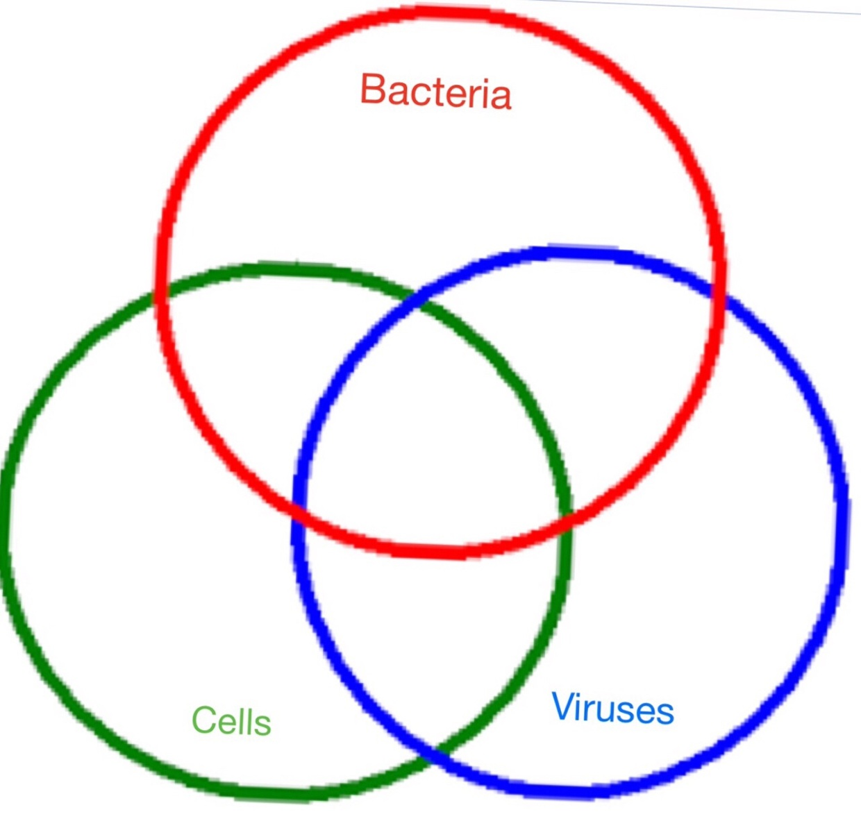 venn diagram  cells vs viruses vs bacteria