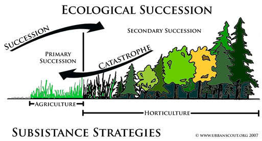 the two main types of an ecosystems succession Ecology/biological community  aquatic ecosystems are comprised of two main types: freshwater ecosystems and marine  succession is divided into two stages.