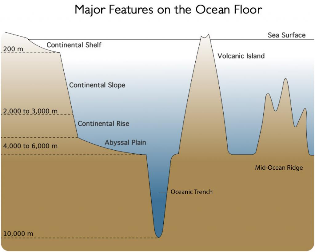 features of the ocean floor. Black Bedroom Furniture Sets. Home Design Ideas