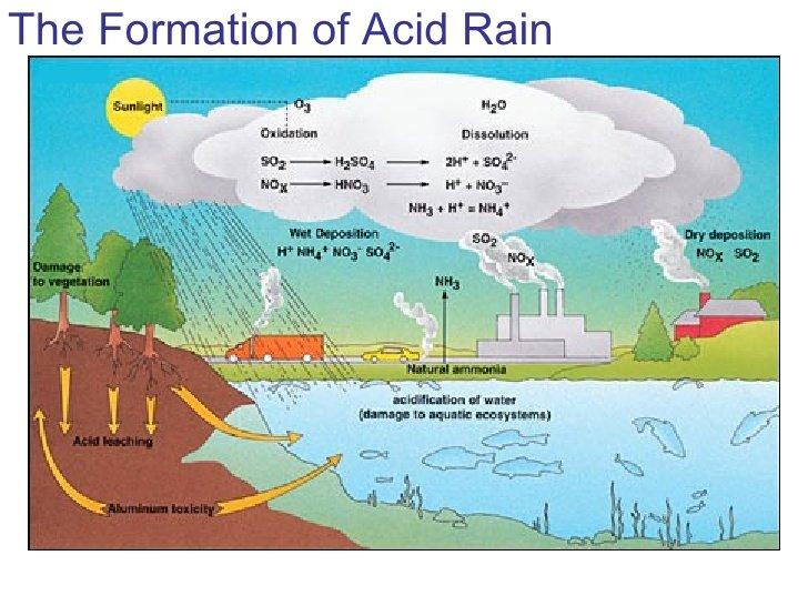 Acid rain can make limestone dissolve - ThingLink