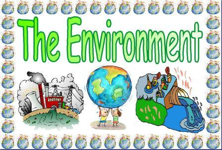 How to edit essay keep the environment clean simple