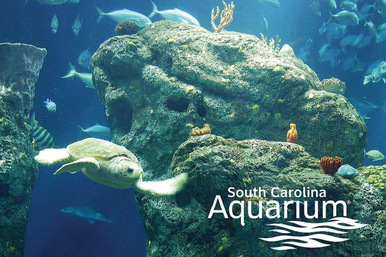 South Carolina Aquarium - Charleston South Carolina Welco...