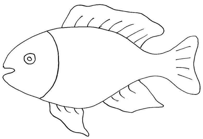 Alex le parti del pesce for Disegni di pesci da stampare