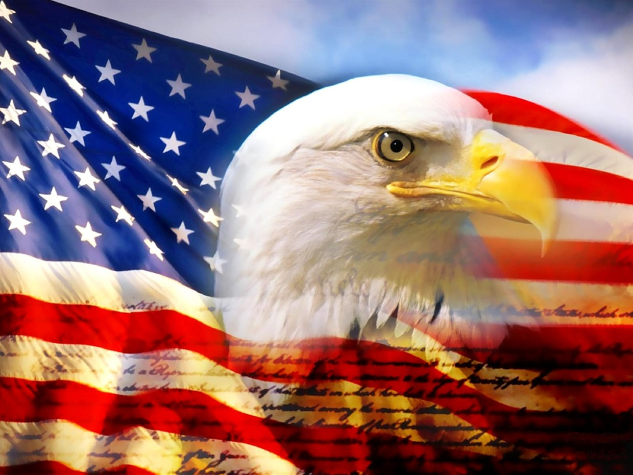 The Bald Eagle Is Another Symbol Of The United States I Thinglink