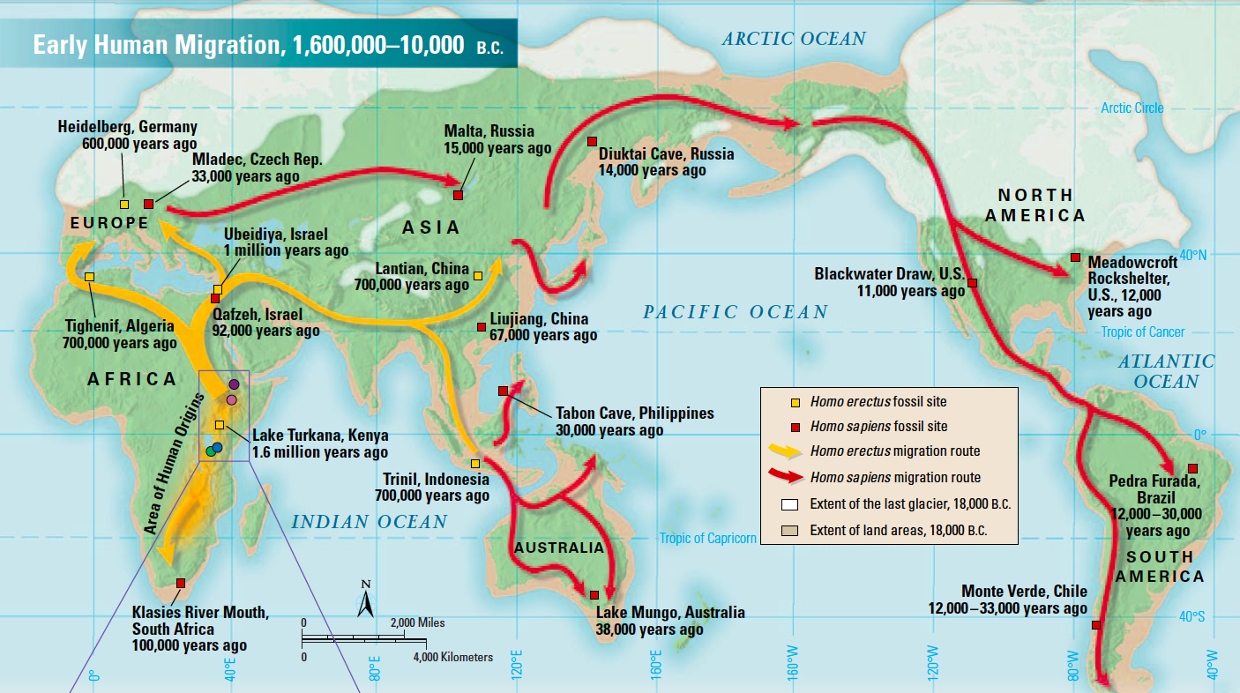 Early human migration patterns