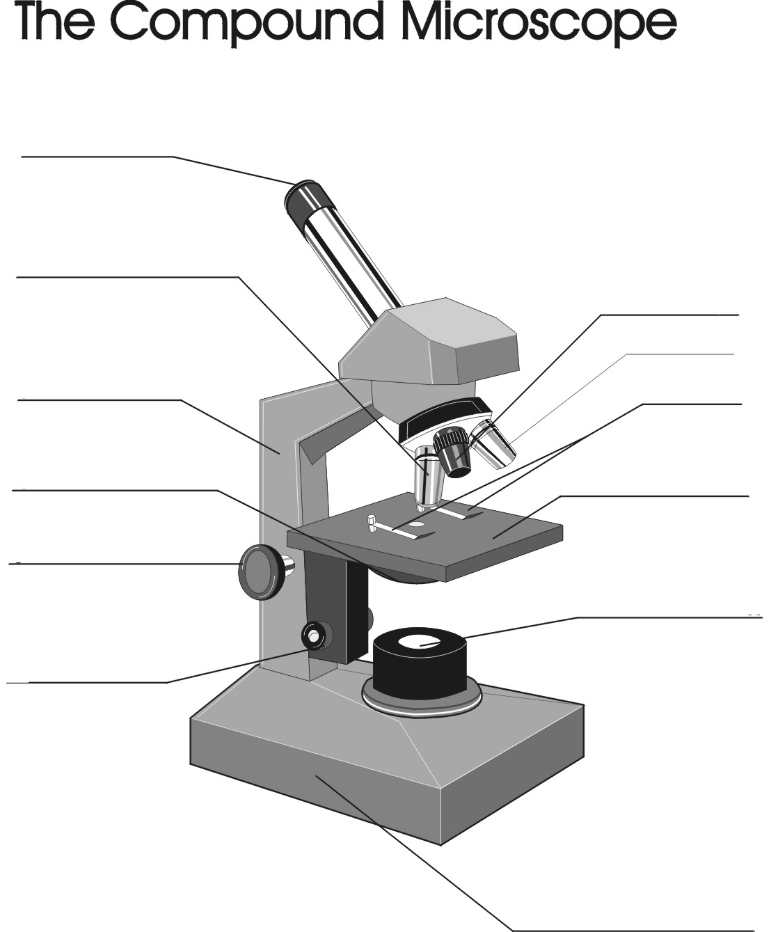 worksheet. Microscope Parts Worksheet. Grass Fedjp Worksheet Study Site
