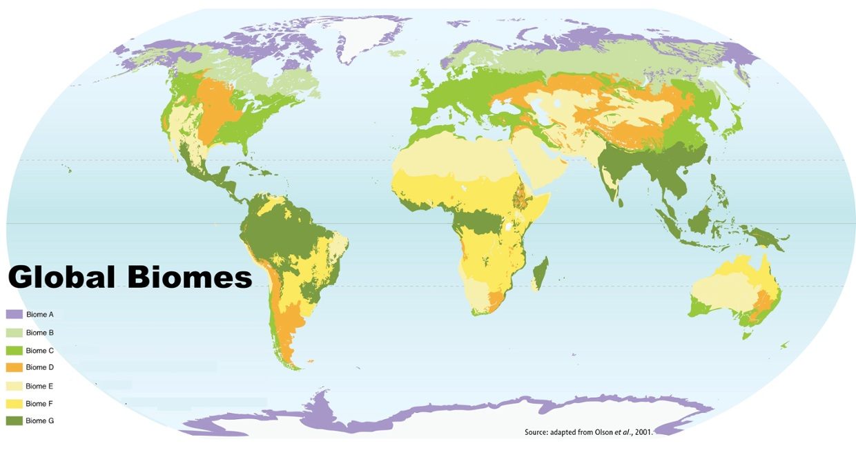 Annotated map of global biomes thinglink sciox Images