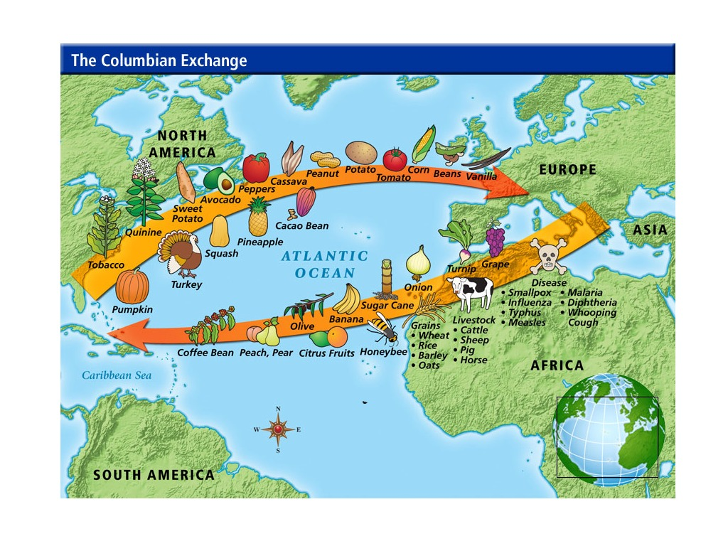 Ap World History The Age Of Exploration Where Is Our Next: The Columbian Exchange