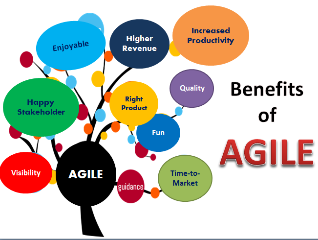 The Agile Movement