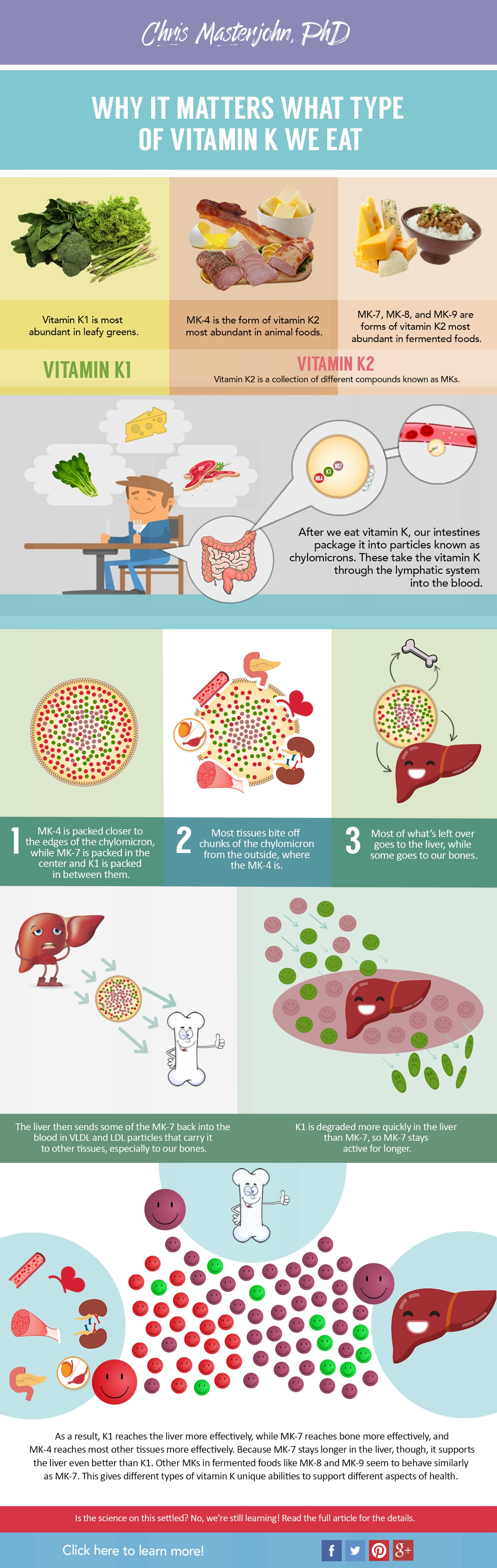 Why It Matters What Type Of Vitamin We Eat