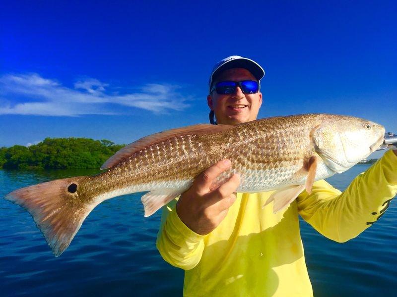 Tampa bay deep sea fishing charters thinglink for Tampa deep sea fishing