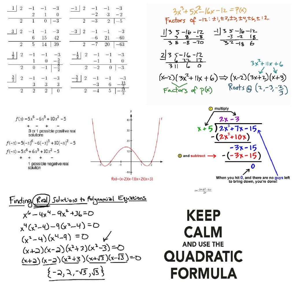"""copy of """"polynomial functions"""""""
