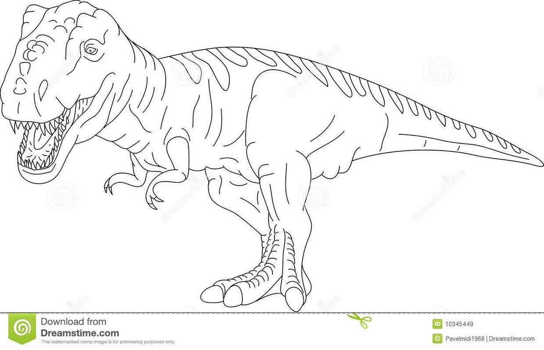Il Tirannosauro E Considerato Il Re Dei Dinosauri
