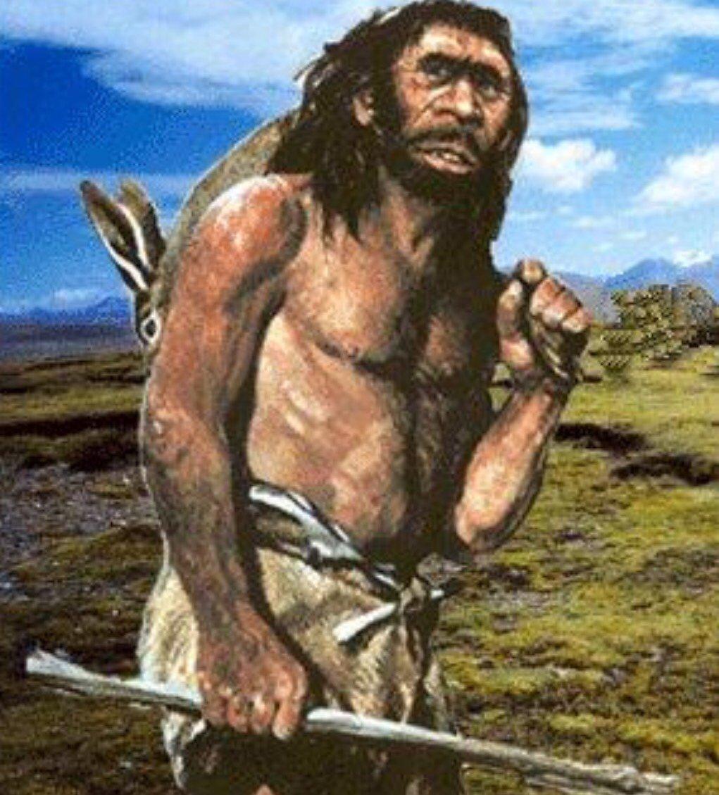 Ľ uomo di neanderthal thinglink