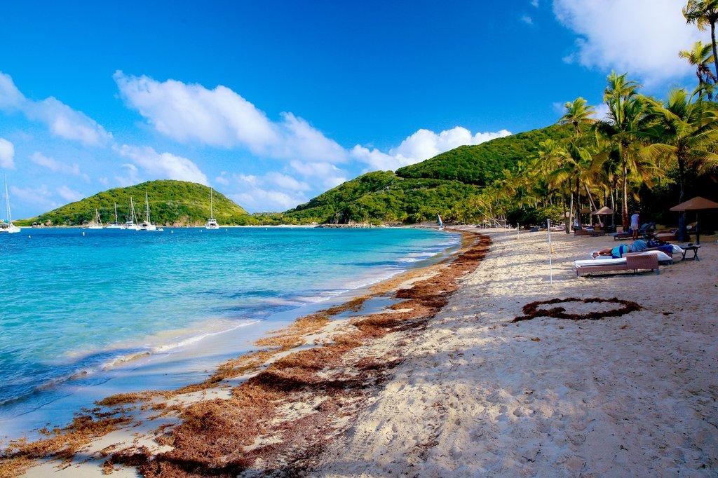 Tour Us Virgin Islands