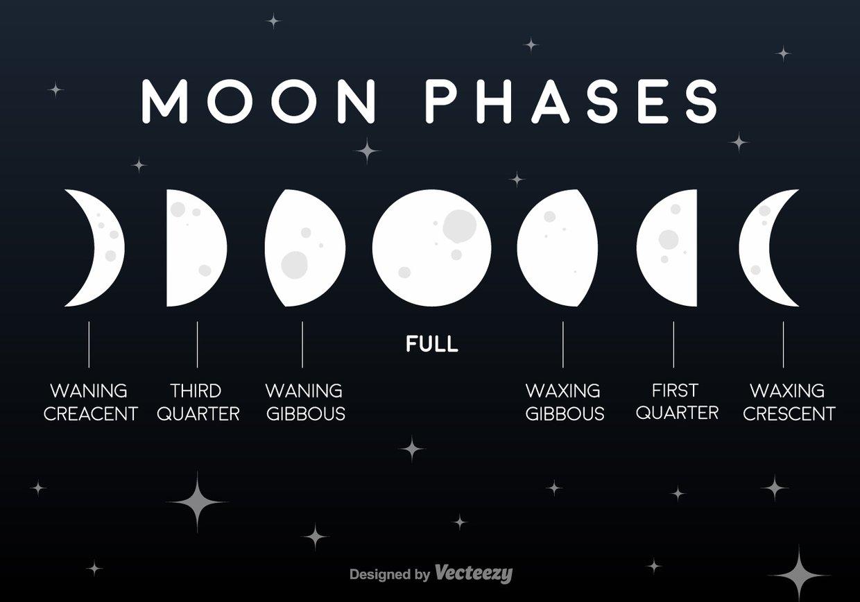 Luna llena , Creciente menguante , Tercer cuarto, Giboso ...