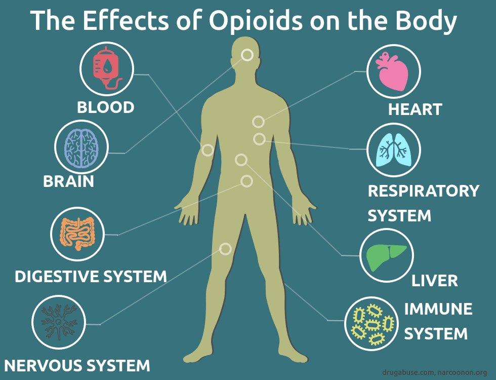 Resource Center Opioid Nation An American Epidemic Kprc 2