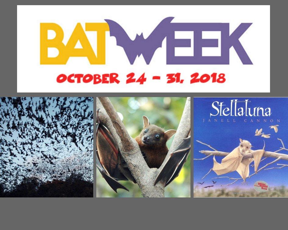 Bat Week 2018
