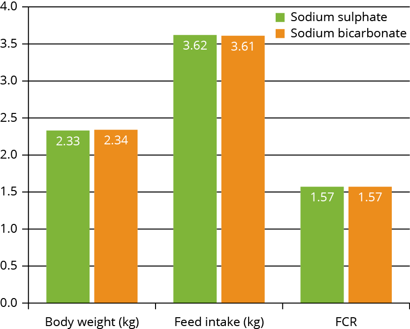 AllAboutFeed - Effect of sodium source without chloride