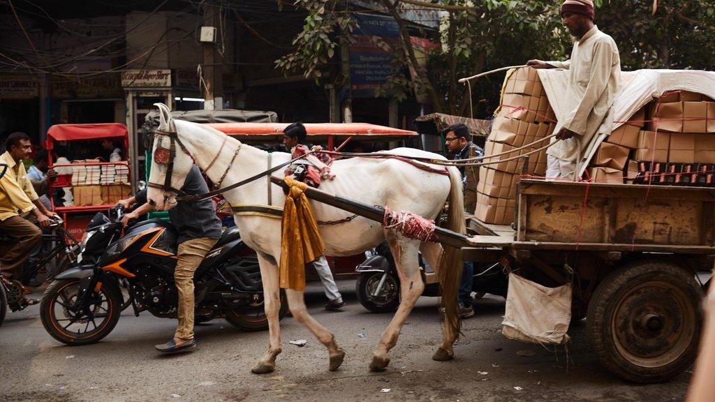 Настоящая Индия в 30 кадрах (фото 15)