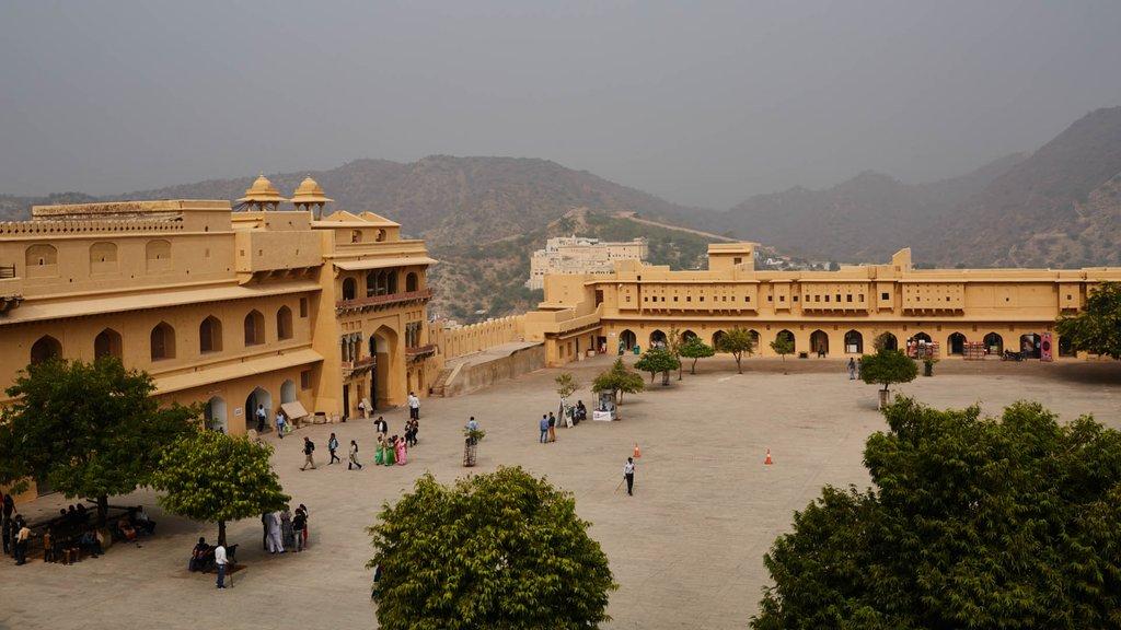 Настоящая Индия в 30 кадрах (фото 23)