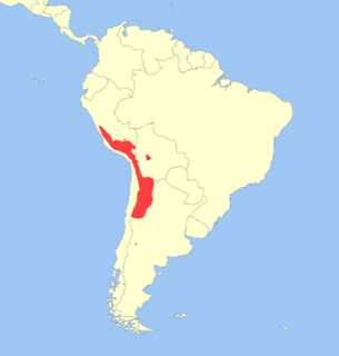 Andes Mountains, The Andes Mountains line the western edg...